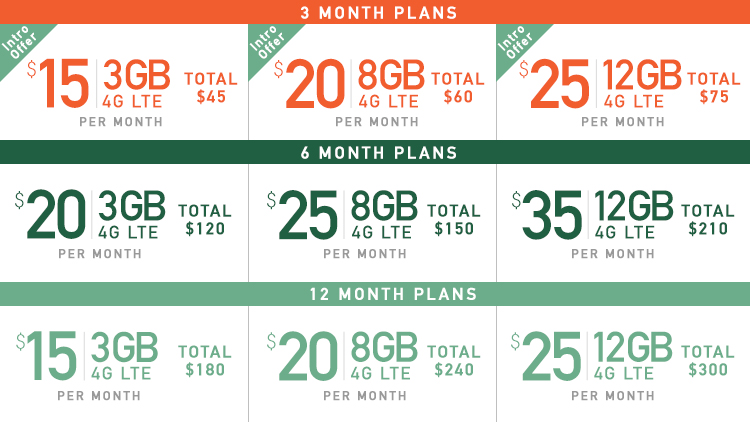 Mint Mobile has amazing prices on their plans.